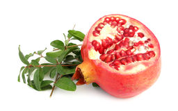 Pomegranate with green leaves stock images