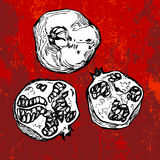 Pomegranate on grunge red background. Hand drawn pomegranate on grunge red background Stock Image