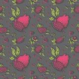 Pomegranate pattern spring edition on dark gray vector illustration