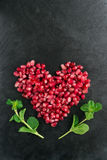 Pomegranate heart Royalty Free Stock Photography