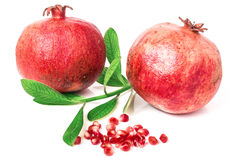 Pomegranate isolated on white background. Two pomegranate isolated on white background stock image