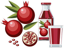 Pomegranate juice royalty free illustration
