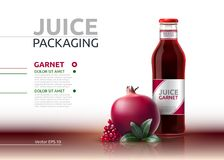 Pomegranate juice packaging Realistic Vector mock up. Granate juicy glass bottle advertise templates. 3d detailed Stock Photography