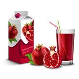 Pomegranate juice set Stock Images