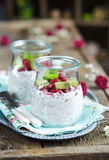 Pomegranate and kiwi chia seeds pudding Royalty Free Stock Images