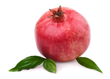 Pomegranate with leaves stock photo