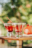 Pomegranate martinis. Served in a natural outdoor environment Royalty Free Stock Photo