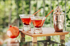 Pomegranate martinis. Served outdoors in a natural environment Royalty Free Stock Photos