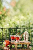 Pomegranate martinis. Served outdoors in a natural environment Stock Photography