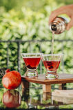 Pomegranate martinis stock images