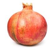 Pomegranate one Stock Photography