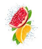 Pomegranate and orange splash Stock Photos