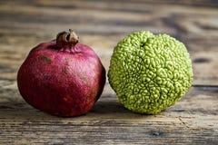 Pomegranate and Osage Orange Stock Images