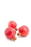 Pomegranate på vit bakgrund Fotografering för Bildbyråer
