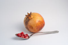 Pomegranate passion Stock Photography