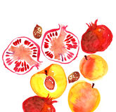 Pomegranate  and peach Stock Image