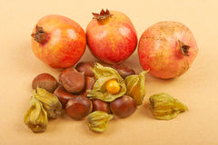 Pomegranate, physalis and chestnuts isolated on a beige backgrou Royalty Free Stock Photography