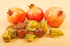 Pomegranate, physalis and chestnuts isolated on a beige backgrou Royalty Free Stock Photos