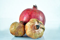 Pomegranate. S. Still life. Grains are visible Stock Image