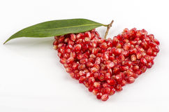 Pomegranate , Punica apple (Punica granatum L.) Royalty Free Stock Photography