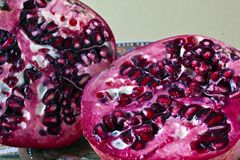Pomegranate (Punica granatum) Stock Image