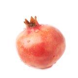 Pomegranate punica granatum fruit Royalty Free Stock Photos