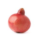 Pomegranate punica granatum fruit Royalty Free Stock Images