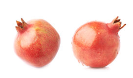 Pomegranate punica granatum fruit Royalty Free Stock Image