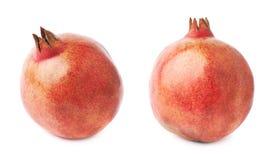 Pomegranate punica granatum fruit Stock Images