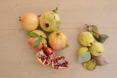 Pomegranate and quince Royalty Free Stock Photo