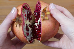 Pomegranate with red grains Royalty Free Stock Photo