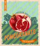 Pomegranate retro poster Royalty Free Stock Images