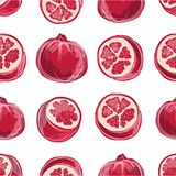 Pomegranate seamless pattern for your design Stock Images