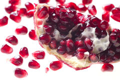 Pomegranate Seed Stock Image