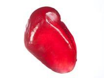 Pomegranate seed Stock Image