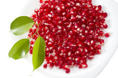 Pomegranate seed pile and green leaves Stock Image