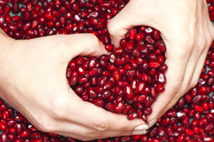 Pomegranate seed's pile Royalty Free Stock Photography