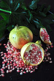 Pomegranate Seed Spread on Black Background Stock Photos