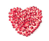 Pomegranate Seeds Stock Image