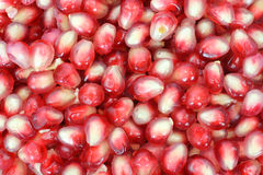 Pomegranate seeds. Close view of a layer of pomegranate seeds royalty free stock image