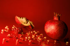 Pomegranate seeds Royalty Free Stock Photos