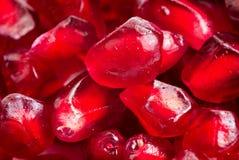 Pomegranate seeds Stock Photography