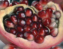 Pomegranate seeds close-up Royalty Free Stock Images