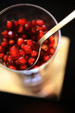 Pomegranate seeds in glass Royalty Free Stock Images