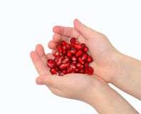 Pomegranate seeds in hands Stock Photography