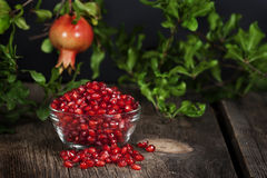 Pomegranate Seeds Hanging Whole Fruit. A glass bowl filled with pomegranate seeds with hanging whole fruit on branch in background Stock Photo