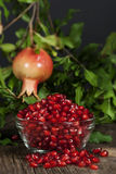 Pomegranate Seeds Hanging Whole Fruit 2 Stock Images