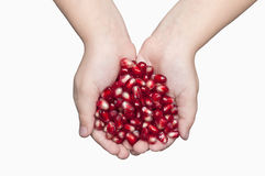 Pomegranate seeds on human palm Royalty Free Stock Photos