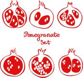 Pomegranate set. Hand drawn vector illustration of outline garnet vector illustration