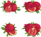 Pomegranate. Set of pomegranates. Vector illustration on a transparent background. Royalty Free Stock Images